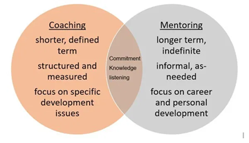 Coaching and Mentoring Programs
