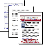 TheStrategyLab Review Trading Manual